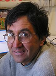 Andrea Ichino