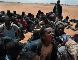 Immigrazione 11